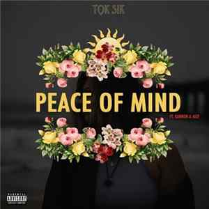 Tok Sik Ft. Kannon & Alef - Peace Of Mind FLAC