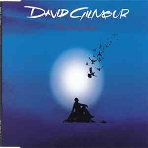 David Gilmour - On An Island FLAC